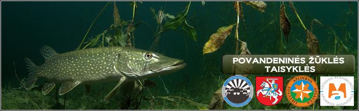 povandeninė žvejyba dėl hipertenzijos